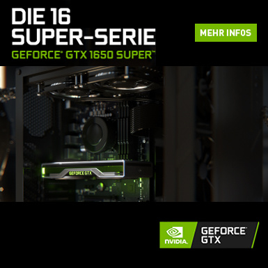 Nvidia GeForce 1650 Gamer PC